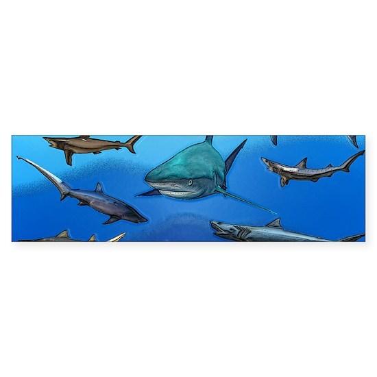 Shark Gathering