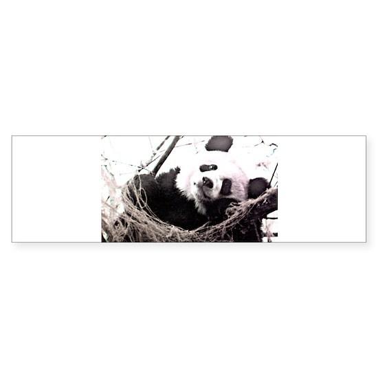 PandaNest2nrSlHc1