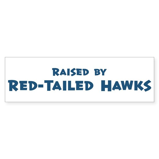 Red-Tailed_Hawks