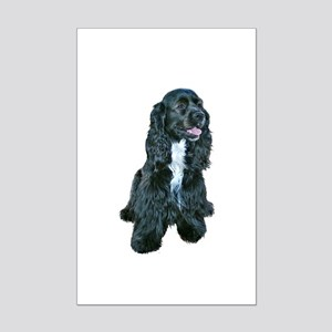 Cocker Spaniel - black w-white chest Mini Poster P
