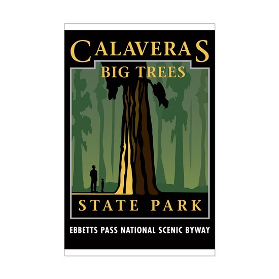 Calaveras Big Trees SP 12
