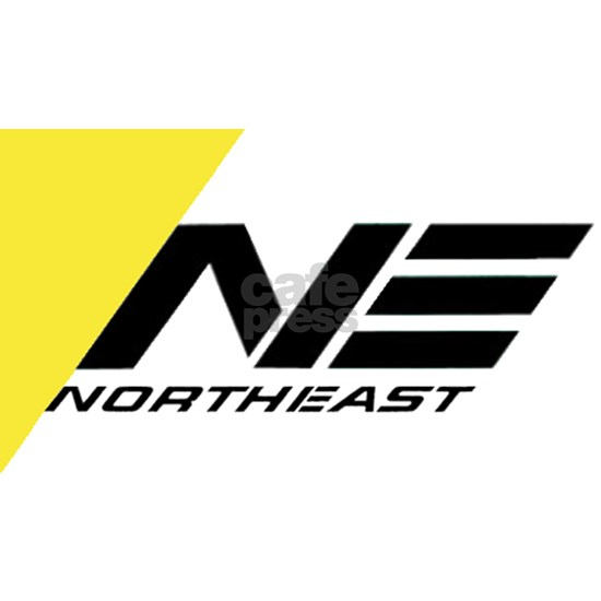 Northeast Airlines Brand