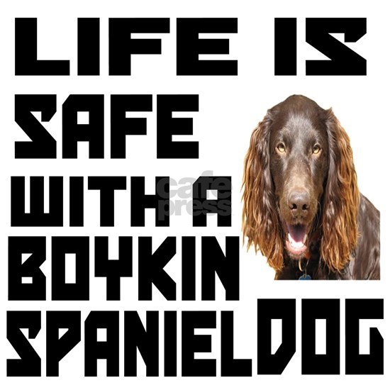 Life Is Safe With A Boykin Spaniel Dog