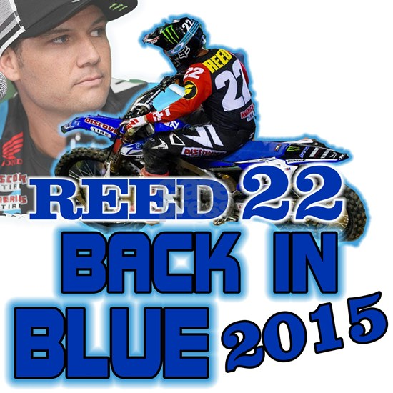 Reed Back in Blue