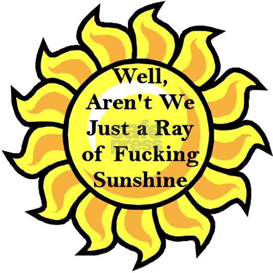 Well Arent We JustA Ray Of Fucking Sunshine