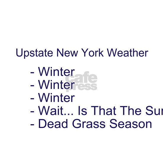 upstate NY weather