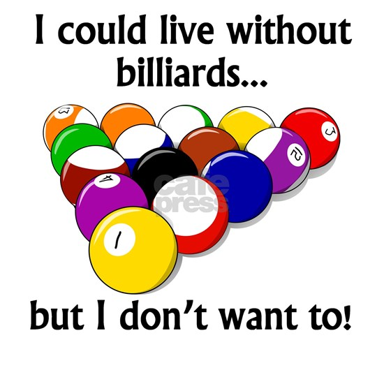 I Could Live Without Billiards