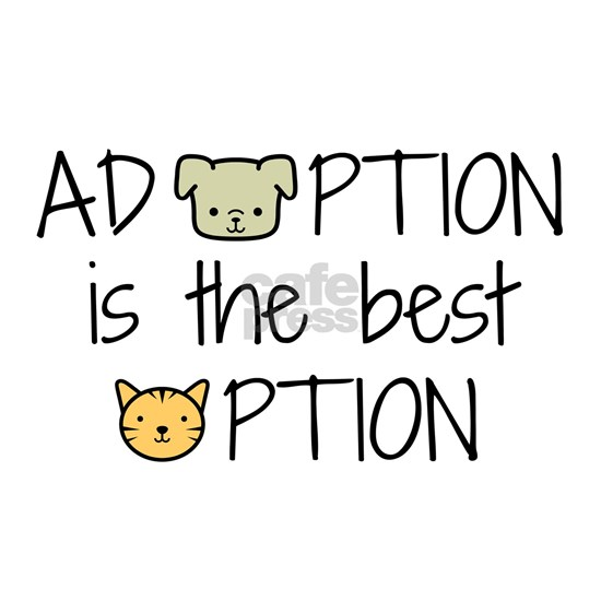Adoption: Best Option