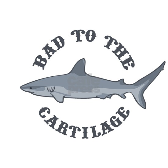 bad-to-cartilage-LTT
