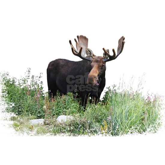 Moose Eating Flowers