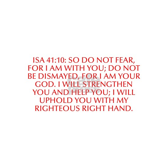 Isa 41 10 So do not fear for I am with you do not