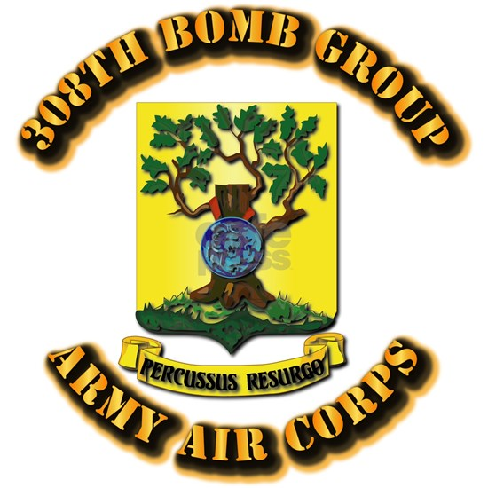AAC - 308th Bomb Group
