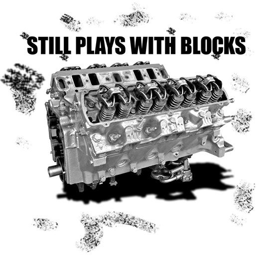 playswithblocks2