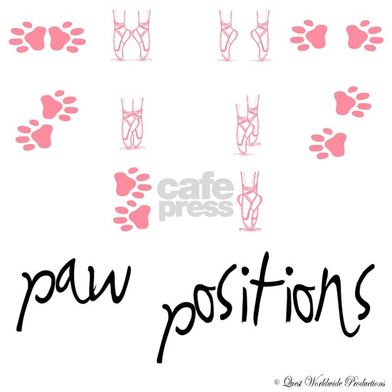 dog_pawpositions