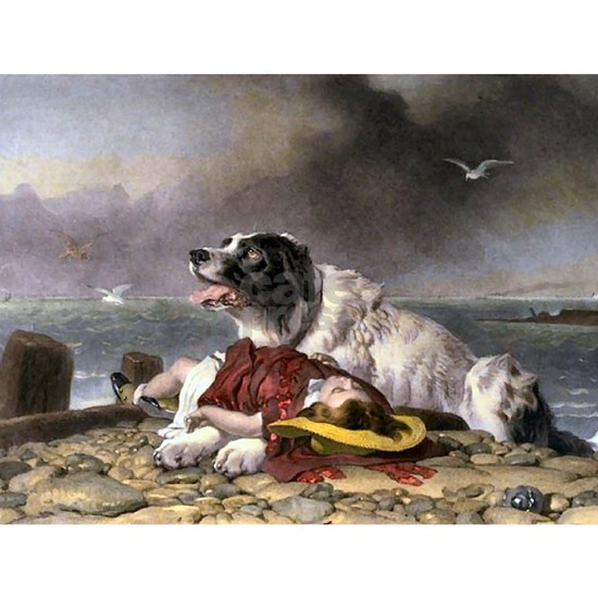Landseer_saved oblong