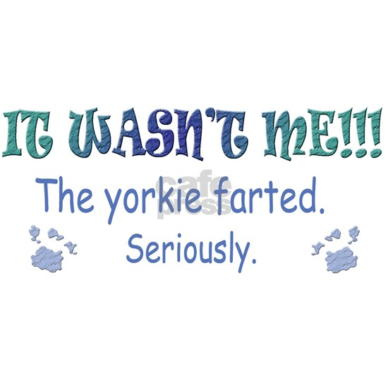 yorkie farted - more breeds