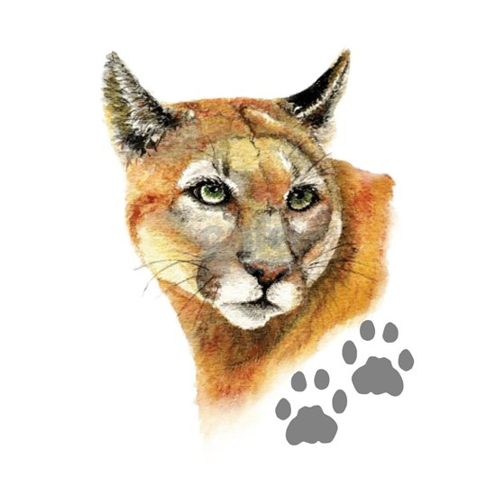 b065fb7d8f849 Watercolor Mountain Lion, Puma, Footprints Animal