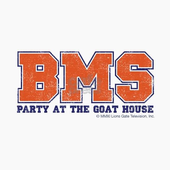 bms-party_Hat