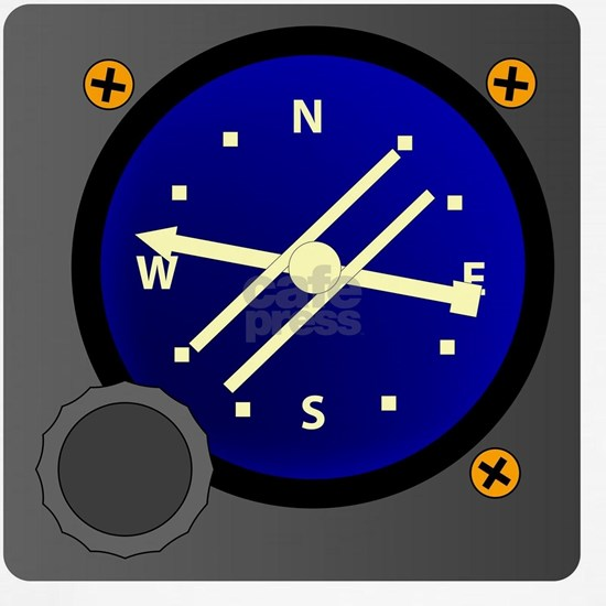 Flight Magnetic Compass