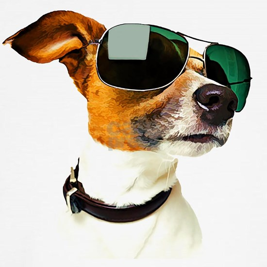 Way Too Cool Terrier with Sunglasses