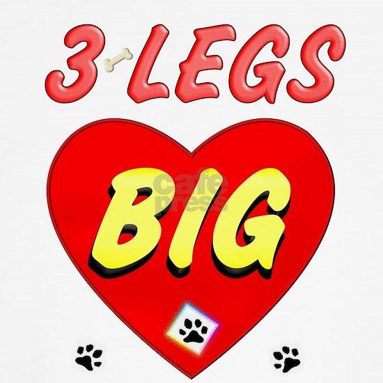 3-3 LEGS