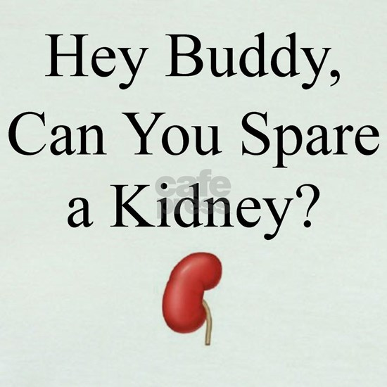 Hey Buddy Can You Spare a Kidney