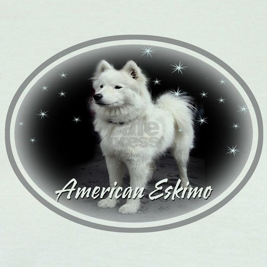 American Eskimo White On Black