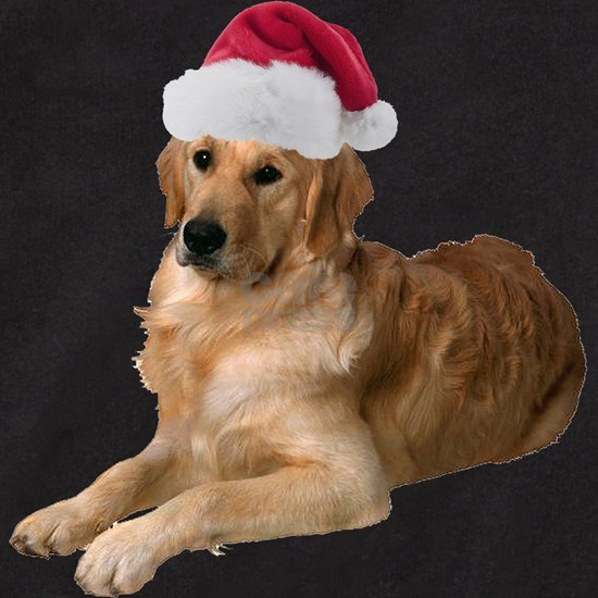 FIN-santa-golden-retriever