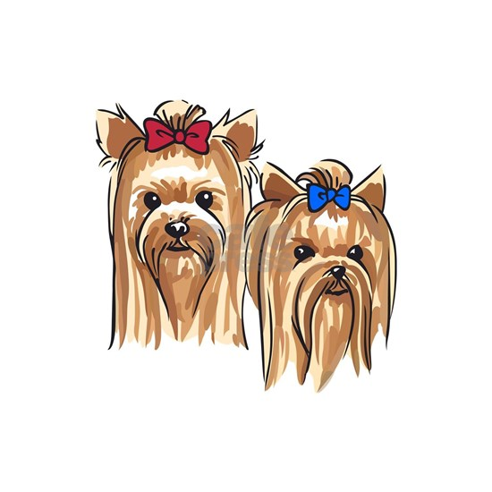 YORKSHIRE TERRIER HEADS