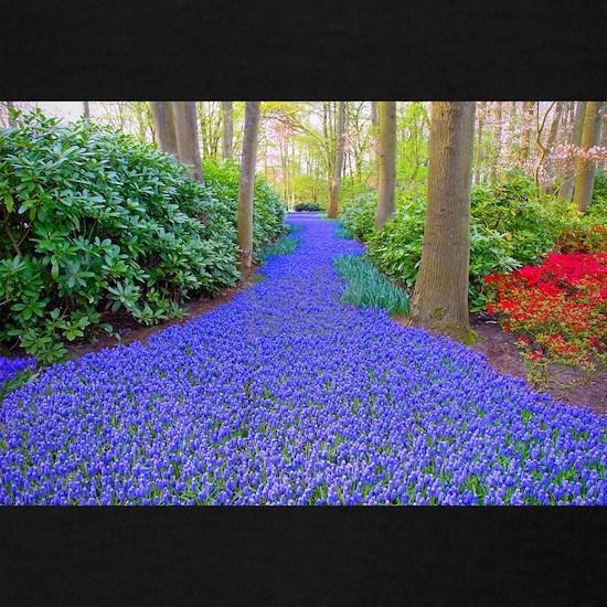 Grape Hyacinth Path