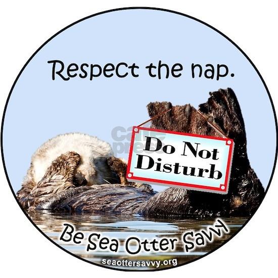 Respect the Nap