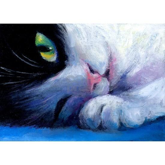 Tuxedo Cat 2