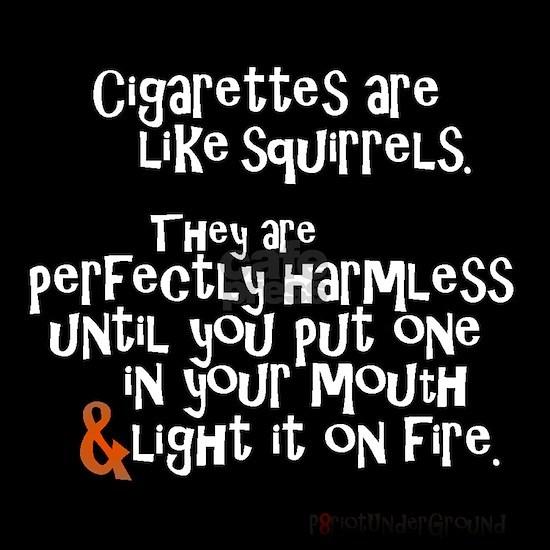 Perfectly Harmless