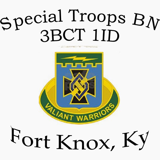 3BCT Special Troops Bn 1ID
