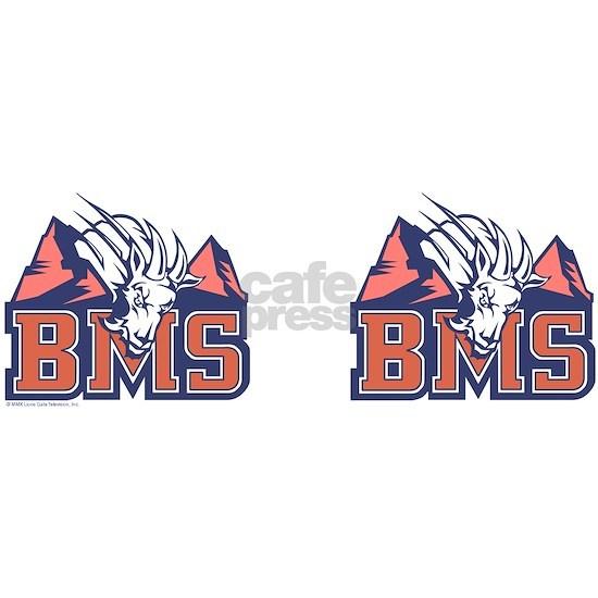 bms_mug