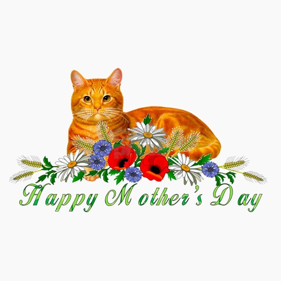 Mother's Day Orange Cat