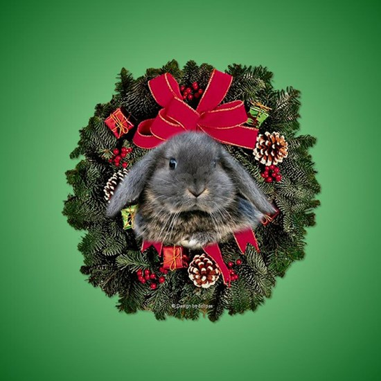 Lop Eared Rabbit Christmas Ornament Round
