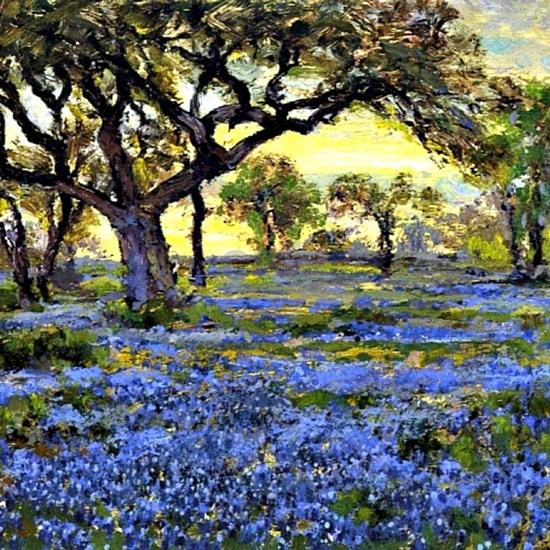 Old Live Oak Tree and Bluebonnets