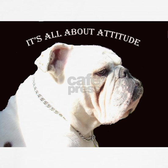ITS ALL ABOUT ATTITUDE