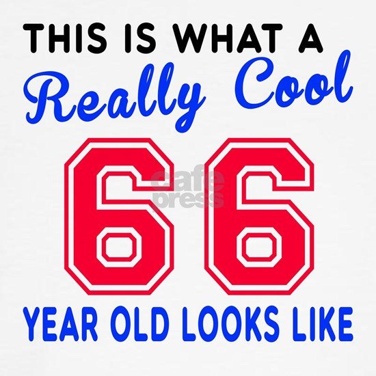 Really Cool 66 Birthday