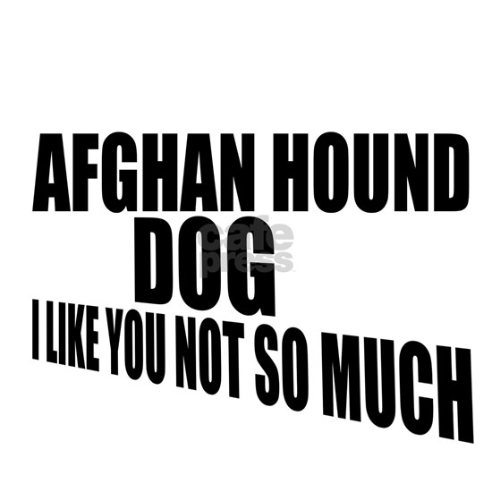 Afghan Hound Dog I Like You Not So Much