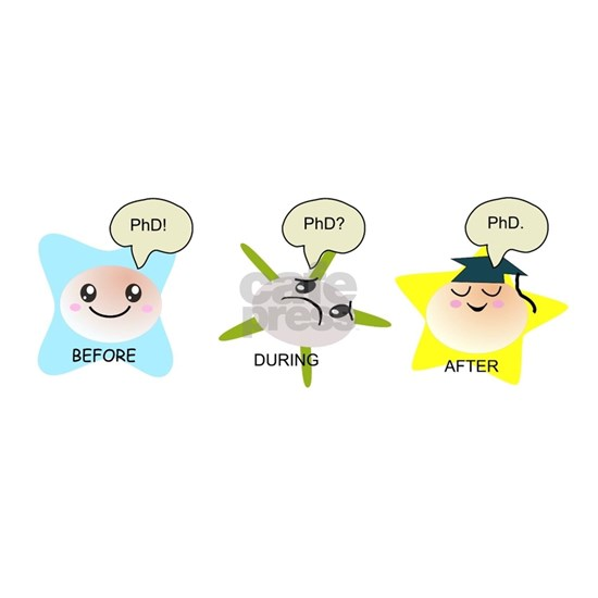 PhD student process