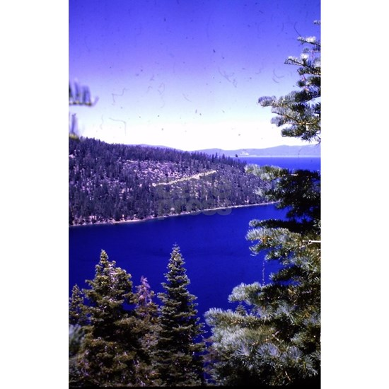very blue lake Tahoe with evergreen trees vintage