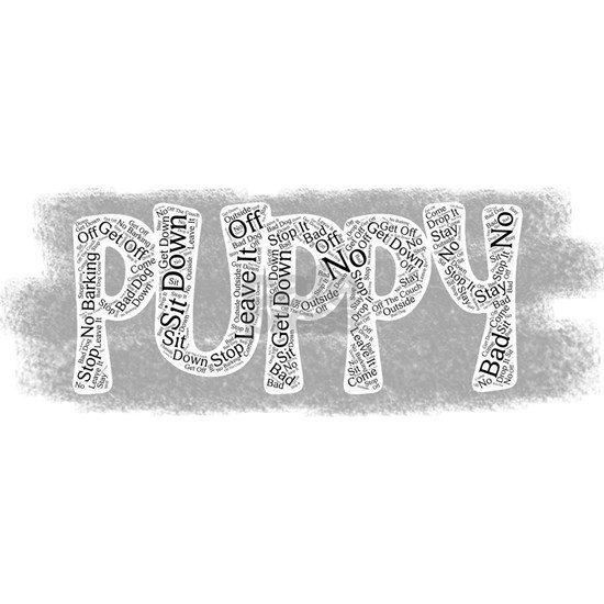 All things puppy!