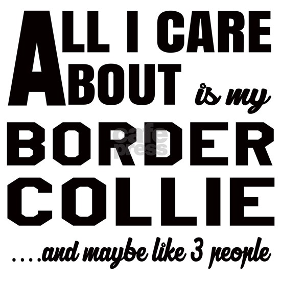All I care about is my Border Collie Dog