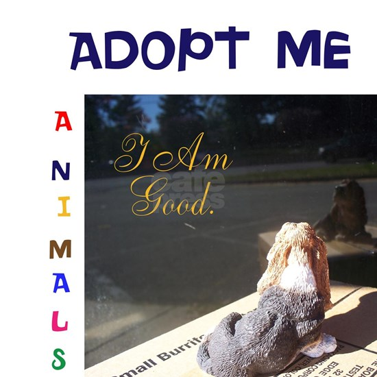 ADOPT ME I AM GOOD.