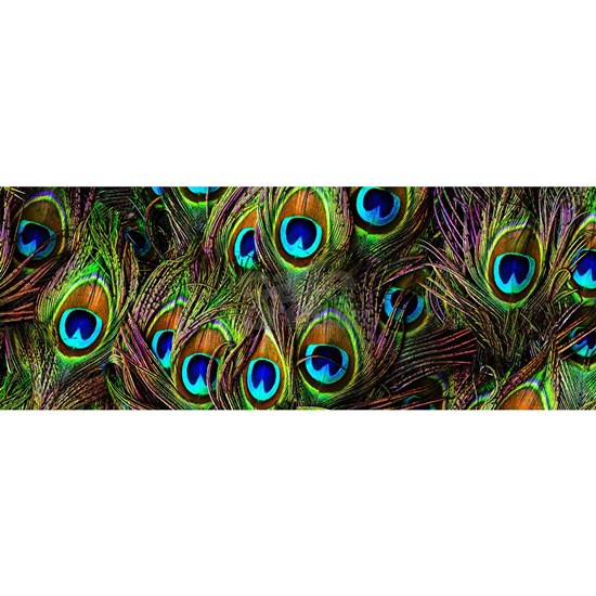 Peacock Feathers Invasion