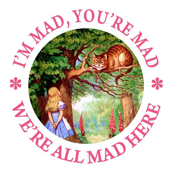 ALICE CAT IM MAD YOURE MAD_PINK copy