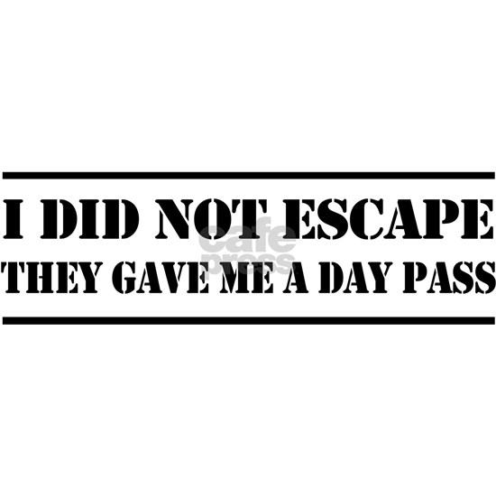 I did not escape they gave me a day pass