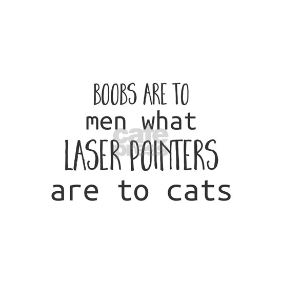 Boobs are to men what laser pointers are to cats.